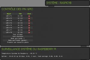 raspberry900